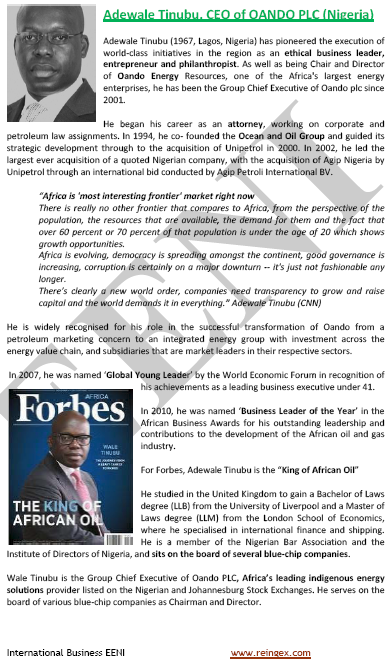 Adewale Tinubu Nigerian Businessman (Course, eLearning)
