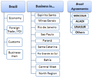 Master / Course: Business in Brazil