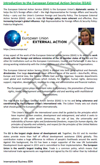 European External Action Service (Course)