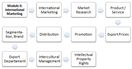 Master of Science in International Marketing